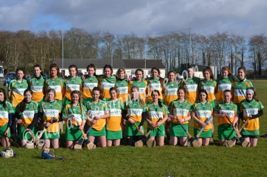 Offaly panel before game