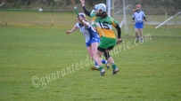 Aideen Freeman handpasses out to Grainne Dolan
