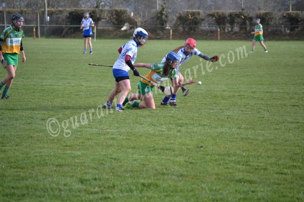 Roisin Egan (O) gets a handpass away from Kate McMahon and Courtney Healey (W)
