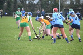 St.Rynaghs duo Roisin Egan and Aoife McLoughlin attempt to fight off Dublin challenges