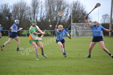 vice Captain Sarah Walsh gets a strike in as Dublin players try to stop her in her tracks